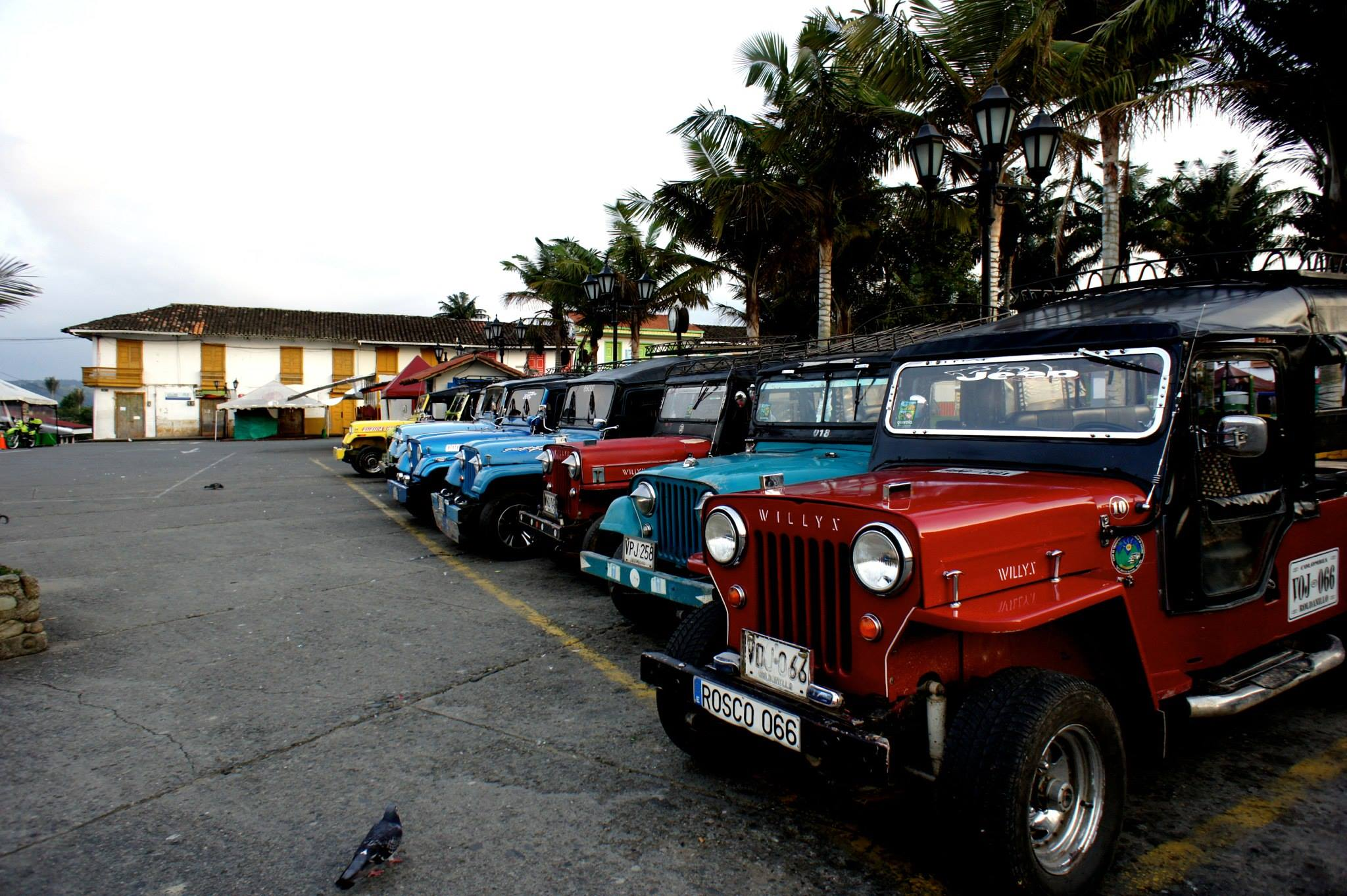 Willys Salento
