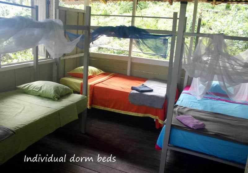 Bolita Hostel Puerto Jimenez