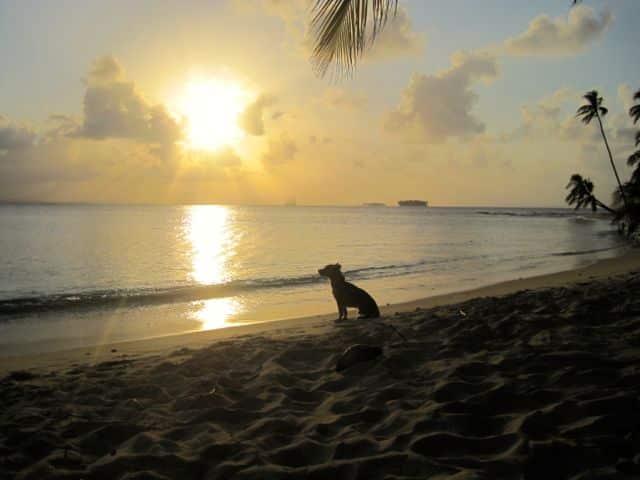 Sunset San Blas