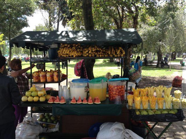 Früchteverkäuferin Parque El Ejido